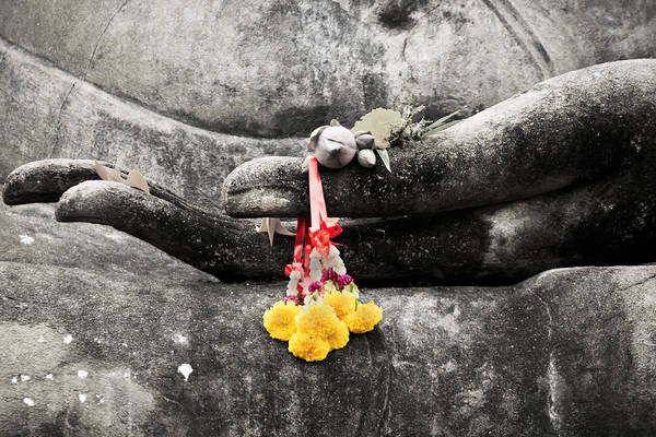 Buddha Poster featuring the photograph The Hand Of Buddha by Adrian Evans