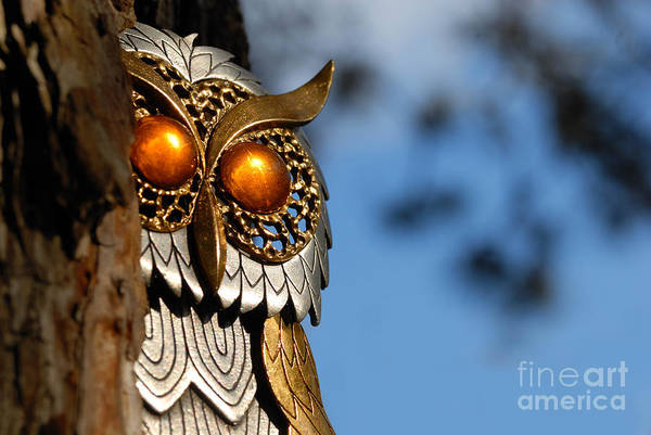 Amber Poster featuring the photograph Faux Owl With Golden Eyes by Amy Cicconi