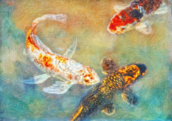 Fish Poster featuring the photograph Koi by Robert Jensen