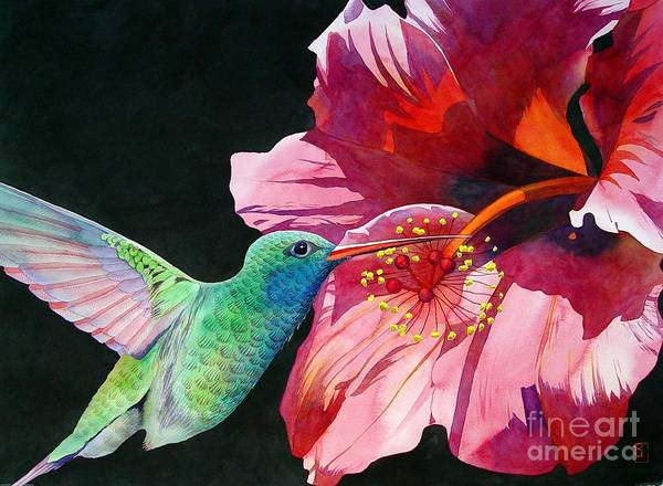 Watercolor Poster featuring the painting Hummingbird And Hibiscus by Robert Hooper