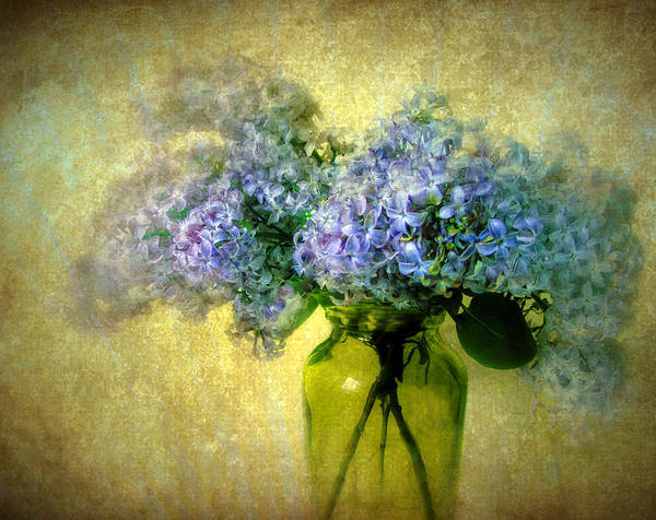 Flowers Poster featuring the photograph Vintage Lilac by Jessica Jenney