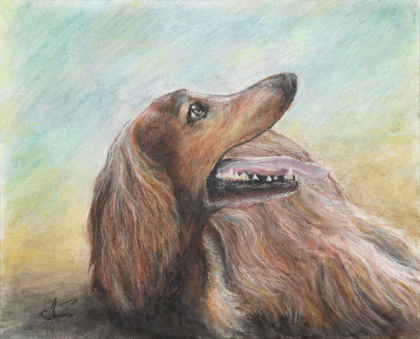 Dog Poster featuring the pastel Molly by Arthur Fix