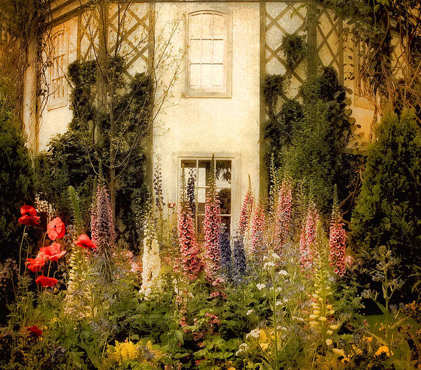 Garden Poster featuring the photograph Darwin's Garden by Jessica Jenney
