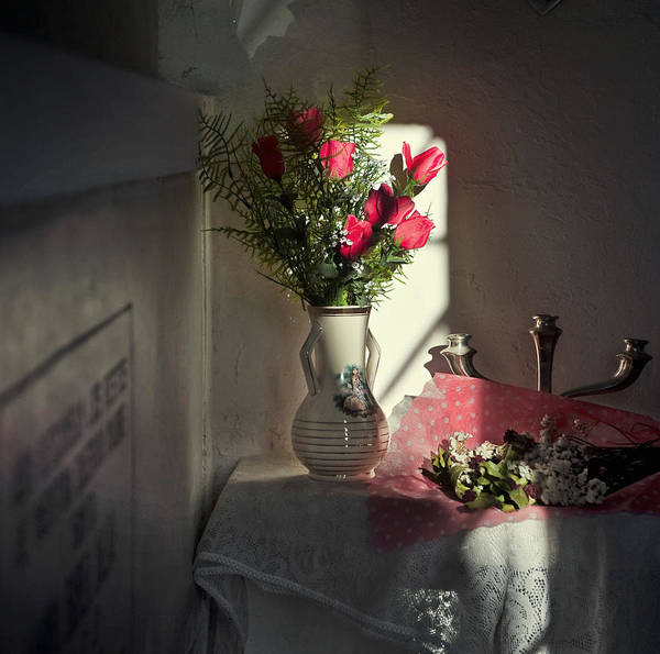 Recoleta Poster featuring the photograph Remembrance The Vase by Michel Verhoef