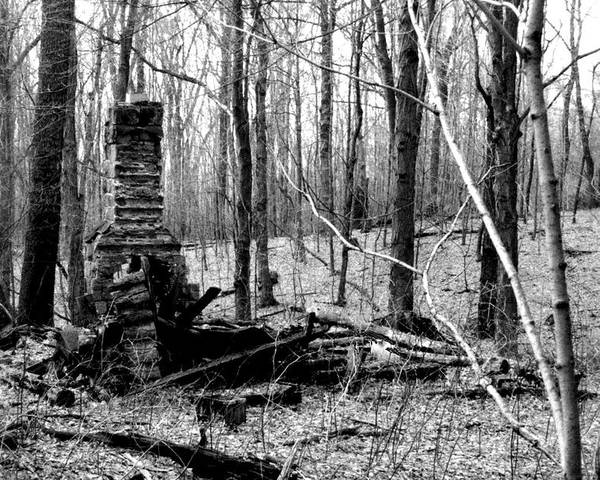 Cabin Poster featuring the photograph 072606-32bw Once Upon A Time There Was A Cabin In A Forest.. by Mike Davis