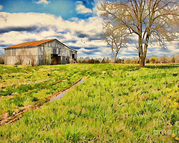 Acre Poster featuring the photograph Back Roads Of Kentucky by Darren Fisher