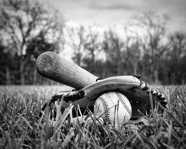 Baseball Poster featuring the photograph Backyard Baseball Memories by Cricket Hackmann