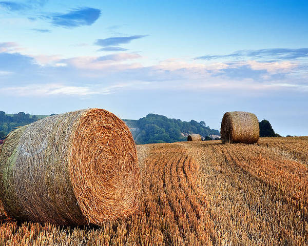 Landscape Poster featuring the photograph Beautiful Golden Hour Hay Bales Sunset Landscape by Matthew Gibson