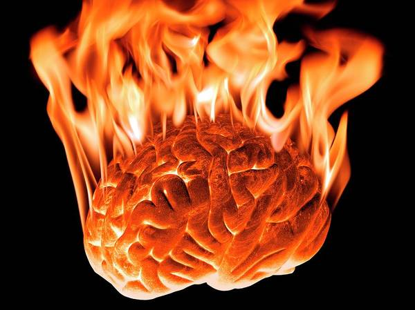 Artwork Poster featuring the photograph Burning Human Brain by Victor De Schwanberg