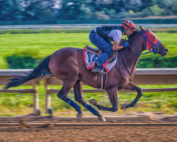 Race Racetrack Horse Racehorse Jockey Thoroughbred Beulah Park Ohio Morning Workout Work Out Warm-up Gallop Sprint Finish Line Poster featuring the photograph Carousel Horse 4 by Richard Marquardt