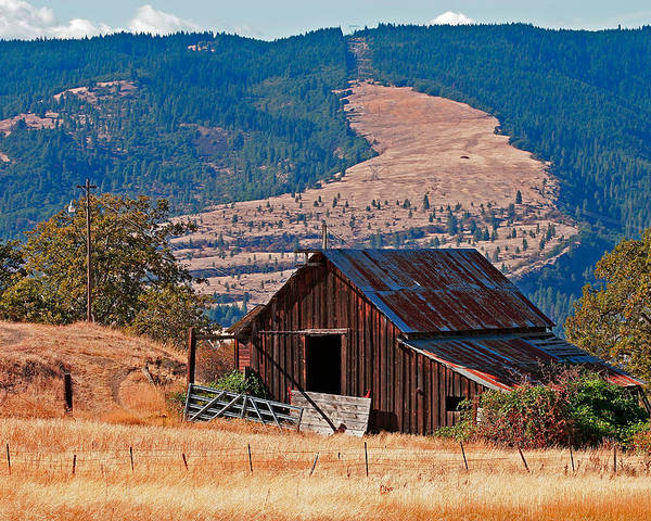 Barn Poster featuring the photograph Columbia River Barn by Peter Tellone