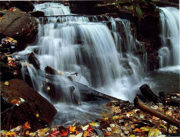 Waterfalls Poster featuring the photograph Fall At Ricketts Glen by Jeffrey Wonders