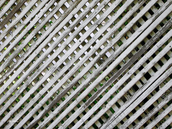 Minimalism Poster featuring the photograph Fence by The Art of Marsha Charlebois