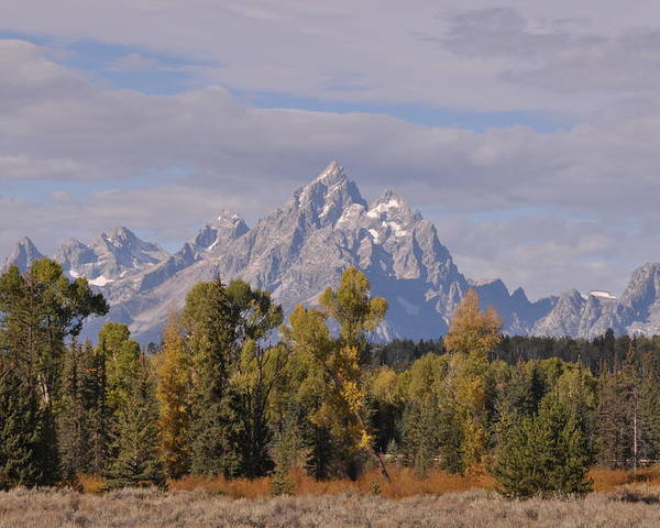 Mountain Poster featuring the photograph Grand Teton by Frank Madia