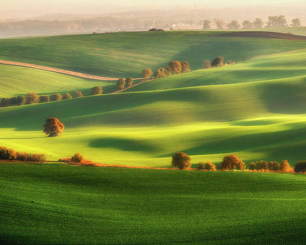 Moravia Poster featuring the photograph Green Fields by Piotr Krol (bax)