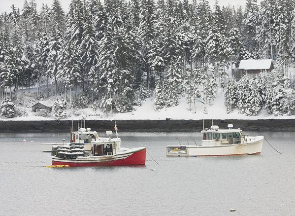 Tenants Harbor Poster featuring the photograph Lobster Boats After Snowstorm In Tenants Harbor Maine by Keith Webber Jr
