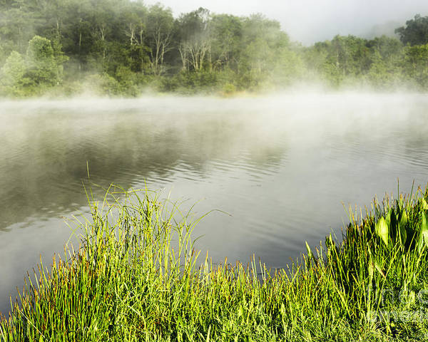 Big Ditch Lake Poster featuring the photograph Misty Summer Morning by Thomas R Fletcher