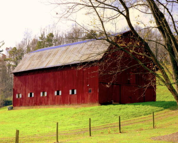 Red Barns Poster featuring the photograph Old Red by Karen Wiles