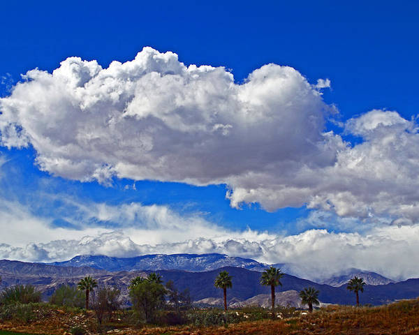 Desert; Palm; Palms; Palm Trees; Mountains; Snow; Snow Capped; Cloud; Clouds; Covered; Grass; Arid; Dry; Palm Desert; Winter; Winter Storm; Tram; Tramway; Palm Springs Tramway; High Desert; Poster featuring the photograph Palm Desert Clouds by Richard Risely