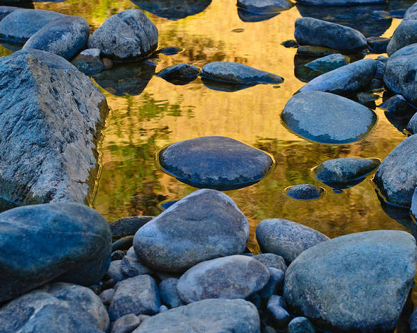 (asra) Poster featuring the photograph River Of Gold 2 by Sherri Meyer