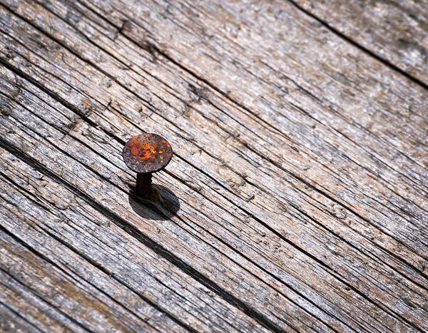 Wooden Poster featuring the photograph Rusty Nail In An Old Wooden Board by Jozef Jankola