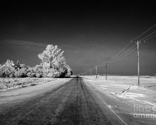 Salt Poster featuring the photograph salt and grit covered rural small road in Forget Saskatchewan Canada by Joe Fox