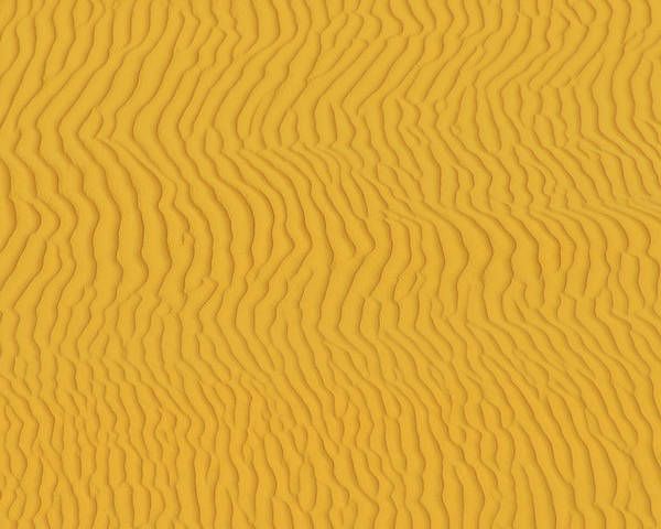 Sand Dune Poster featuring the photograph Sand Dune Patterns by Raimund Linke