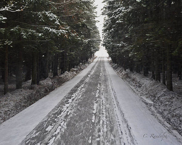 Winter Scene Poster featuring the photograph Stopping By Woods by Cheri Randolph