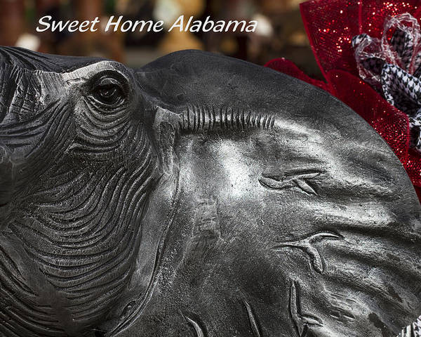Alabama Football Poster featuring the photograph Sweet Home Alabama by Kathy Clark