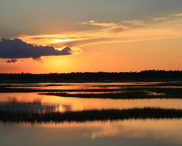 Wilmington Nc Poster featuring the photograph Tidal Marsh Wilmington Nc by Mountains to the Sea Photo