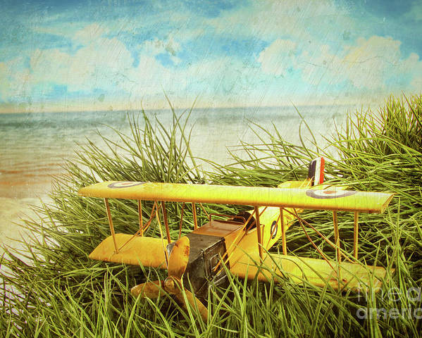 Aircraft Poster featuring the photograph Vintage Toy Plane In Tall Grass At The Beach by Sandra Cunningham
