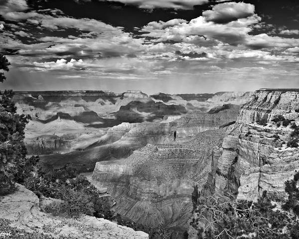 Grand Canyon Poster featuring the digital art West Rim Grand Canyon National Park by Bob and Nadine Johnston