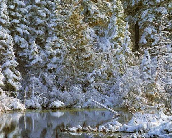 Winter Landscape Image Of Snow Covered Trees Reflecting In A Creek Poster featuring the photograph Winter Scene by Pat Now