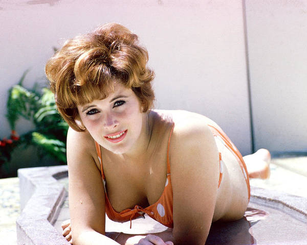 Jill St. John Poster featuring the photograph Jill St. John 15 by Silver Screen