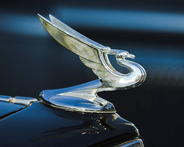 1935 Chevrolet Sedan Poster featuring the photograph 1935 Chevrolet Sedan Hood Ornament by Jill Reger