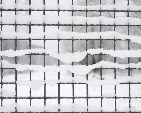 Fence Poster featuring the photograph Fence With Snow by Mats Silvan