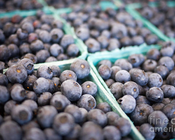 Fruit Poster featuring the photograph Fresh Blueberries by Edward Fielding