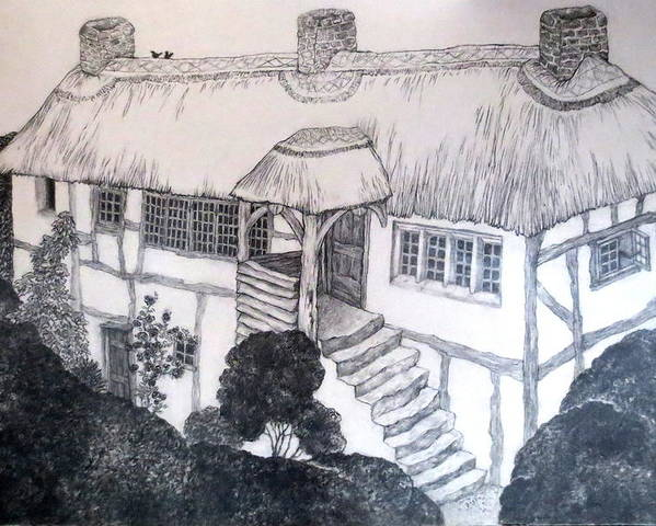 Garden Cottage Poster featuring the drawing Garden Cottage by Diane Fine