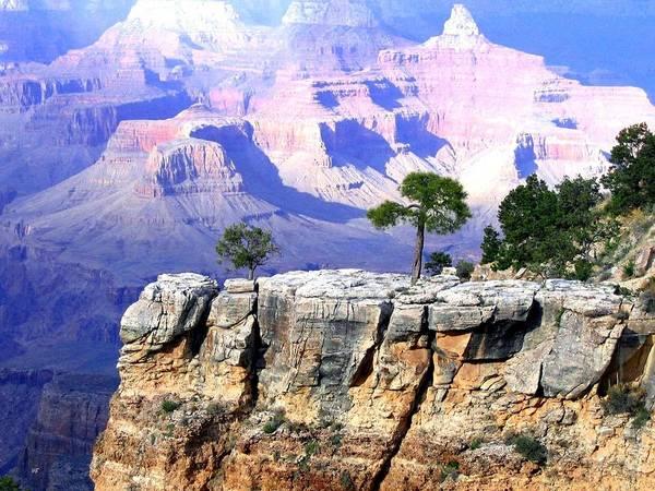 #grandcanyon1vista Poster featuring the photograph Grand Canyon 1 by Will Borden