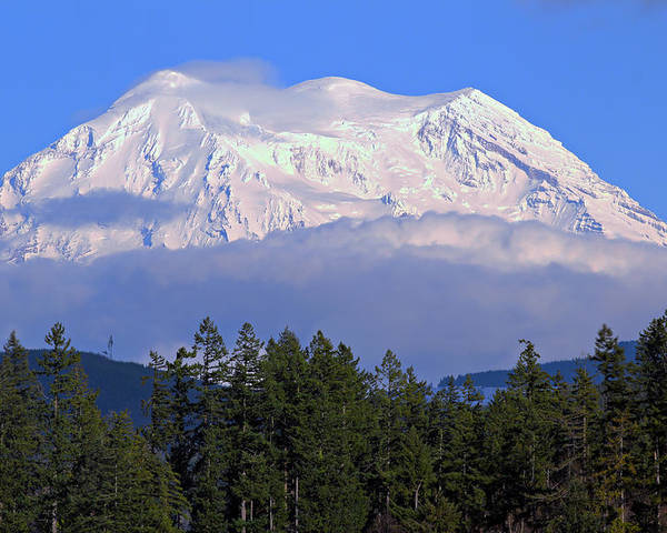 Outdoor Poster featuring the photograph Mount Rainier by Paul Fell
