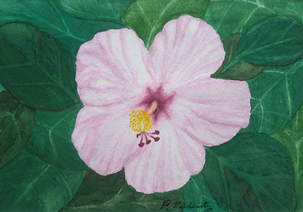 Hibiscus Poster featuring the painting Pink Hibiscus by Patty Dopkin
