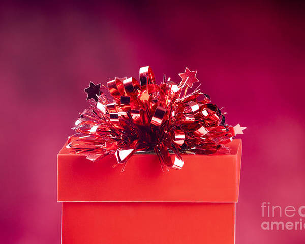 Anniversary Poster featuring the photograph Red Gift Box by Tim Hester
