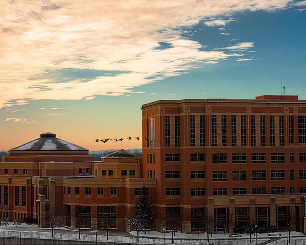 Rochester Minnesota Geese Goose Bird Fowl Water Waterfowl Winter Snow Orange Red Yellow Blue White Sky Winter Scenic City Architecture Fly Flight Cloud Sun Sunrise Photographs Poster featuring the photograph Sunrise Flyby by Tom Gort