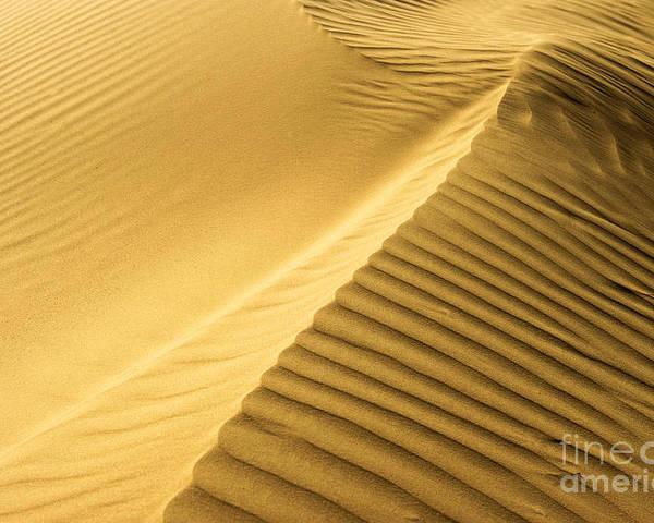 Dunes Poster featuring the photograph Desert Sand Dune by Ezra Zahor