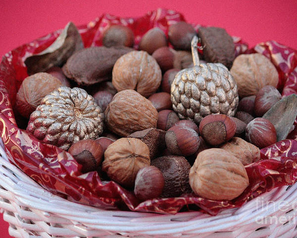 Mixed Nuts Poster featuring the photograph Mixed Holiday Nuts by Luv Photography