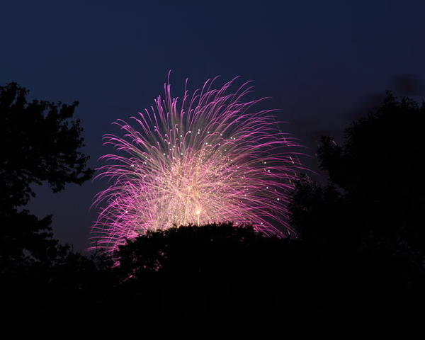 Washington Poster featuring the photograph 4th Of July Fireworks - 01133 by DC Photographer