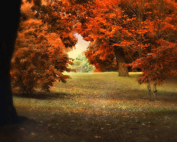 Autumn Poster featuring the photograph Autumn Ablaze by Jessica Jenney