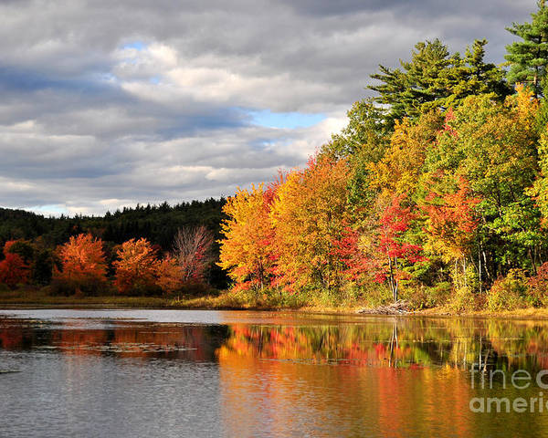 Autumn Poster featuring the photograph Fall Foliage In New England by Staci Bigelow