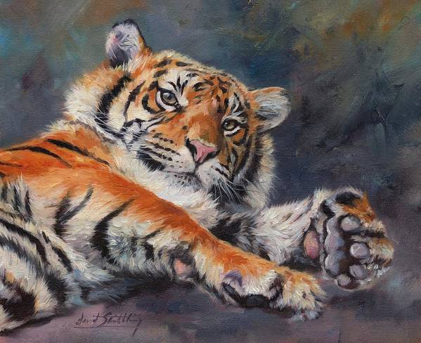 Tiger.looking Up Poster featuring the painting Amur Tiger by David Stribbling