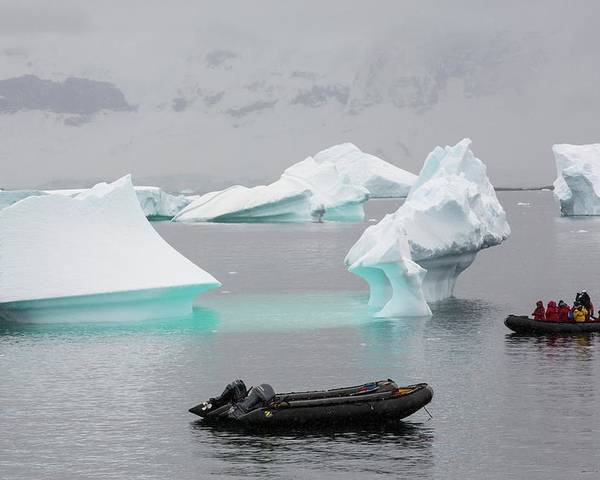 Curverville Island Poster featuring the photograph Icebergs Off Curverville Island by Ashley Cooper